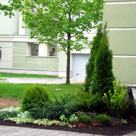 Landscaping area of home on Krestovsky